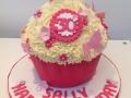 Giant Cupcake 3